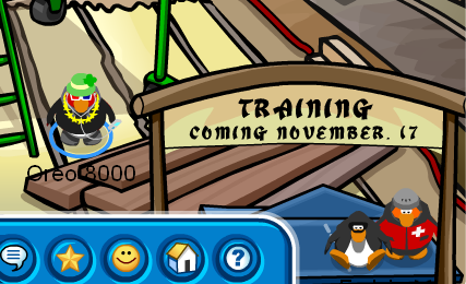 possible-ninja-training