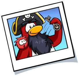 rockhopper-cp-picture