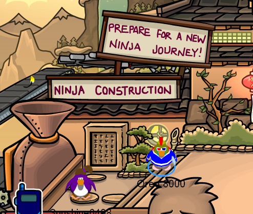 Ninja Hideout during Construction
